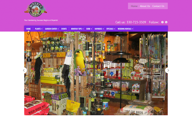 Before-website-redesign-Medina